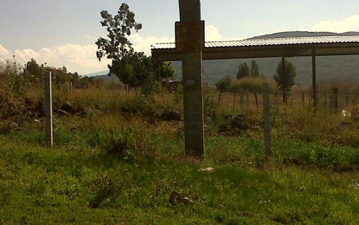 Foto de terreno industrial en venta en  , central de abastos, zamora, michoacán de ocampo, 501253 No. 13