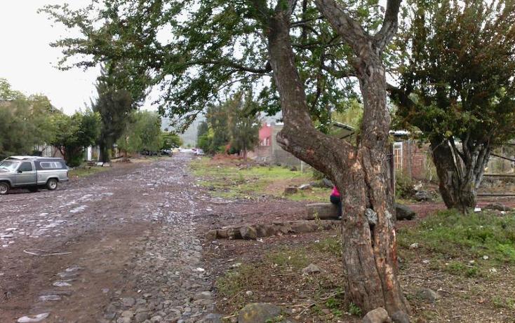 Foto de terreno industrial en venta en  , central de abastos, zamora, michoacán de ocampo, 501253 No. 15