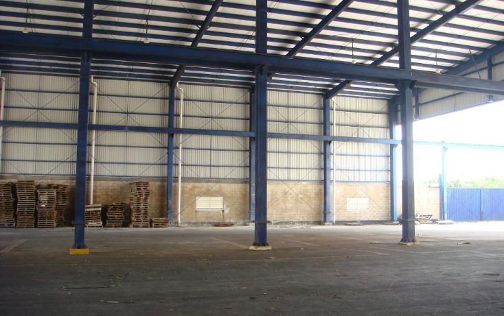 Foto de nave industrial en venta en  , central de bodegas, benito juárez, quintana roo, 1323905 No. 05