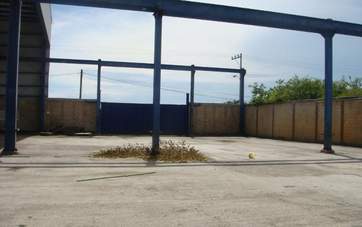 Foto de nave industrial en venta en  , central de bodegas, benito juárez, quintana roo, 1323905 No. 06