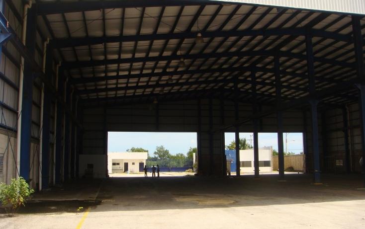 Foto de nave industrial en venta en  , central de bodegas, benito juárez, quintana roo, 1323905 No. 07