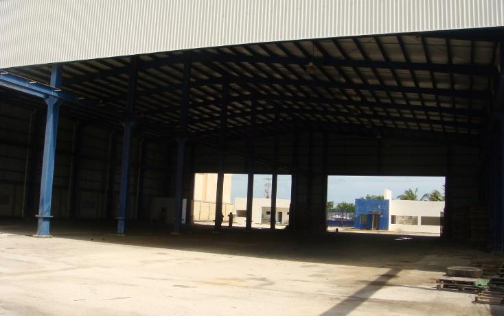 Foto de nave industrial en venta en  , central de bodegas, benito juárez, quintana roo, 1323905 No. 08