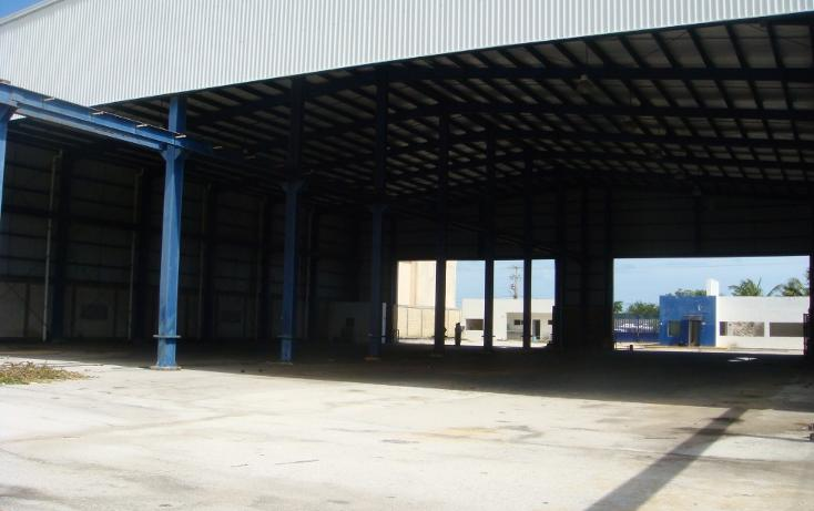 Foto de nave industrial en venta en  , central de bodegas, benito juárez, quintana roo, 1323905 No. 10