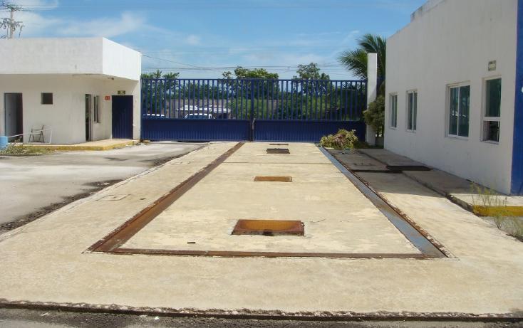 Foto de nave industrial en venta en  , central de bodegas, benito juárez, quintana roo, 1323905 No. 14
