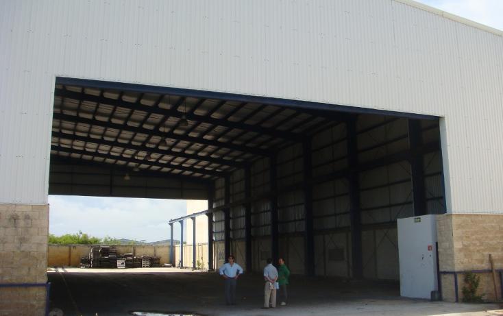 Foto de nave industrial en venta en  , central de bodegas, benito juárez, quintana roo, 1323905 No. 18
