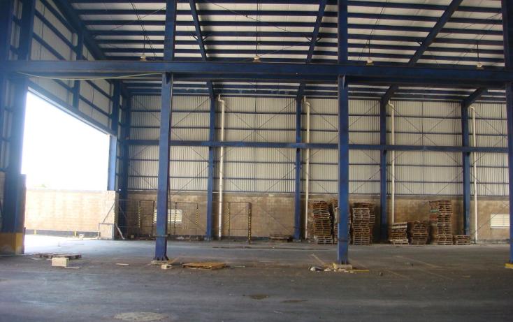Foto de nave industrial en venta en  , central de bodegas, benito juárez, quintana roo, 1323905 No. 23