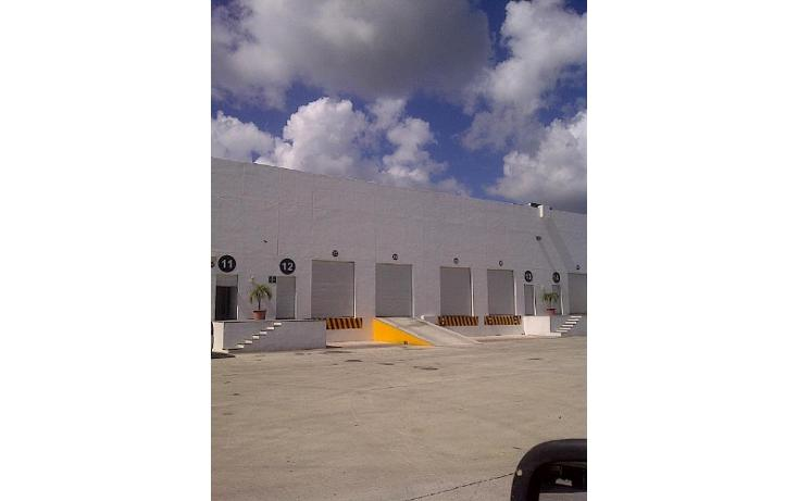 Foto de nave industrial en renta en  , central de bodegas, benito juárez, quintana roo, 1459109 No. 04