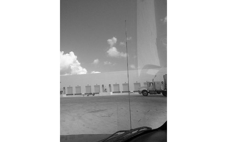 Foto de nave industrial en renta en  , central de bodegas, benito juárez, quintana roo, 1459109 No. 05