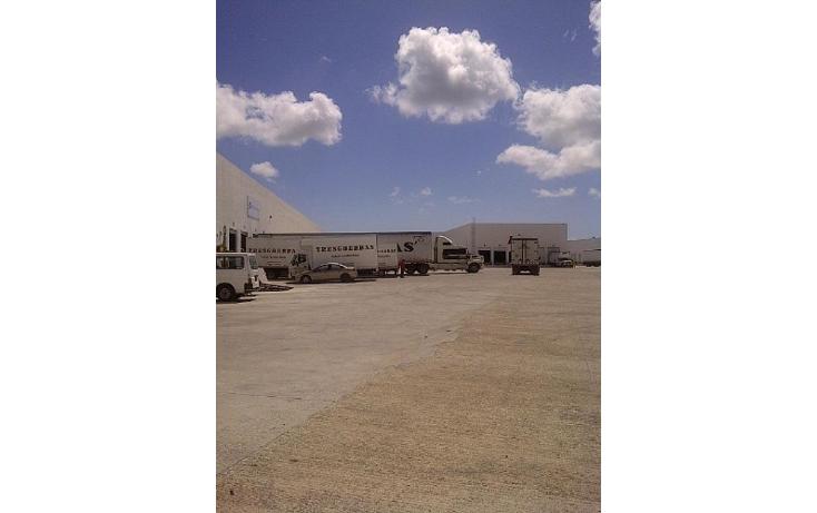Foto de nave industrial en renta en  , central de bodegas, benito juárez, quintana roo, 1459109 No. 07