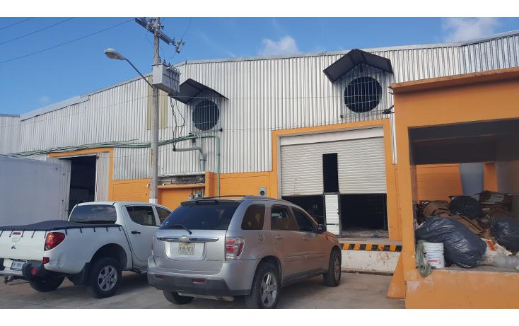 Foto de nave industrial en venta en  , central de bodegas, benito juárez, quintana roo, 1466283 No. 01