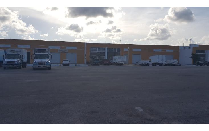 Foto de nave industrial en venta en  , central de bodegas, benito juárez, quintana roo, 1466283 No. 05