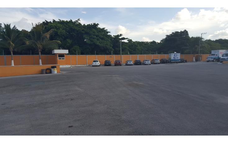 Foto de nave industrial en venta en  , central de bodegas, benito juárez, quintana roo, 1466283 No. 06