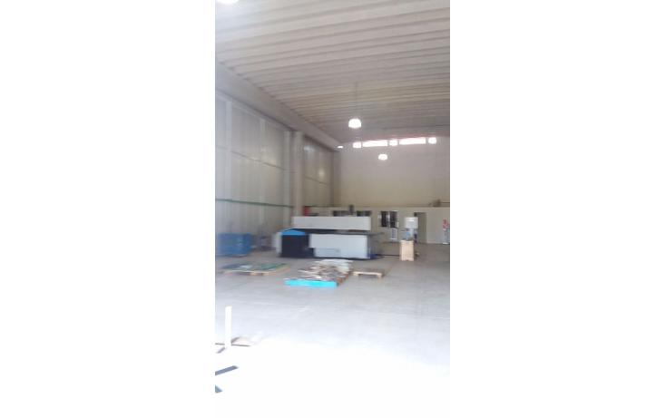 Foto de nave industrial en renta en  , central de bodegas, benito juárez, quintana roo, 1600624 No. 02