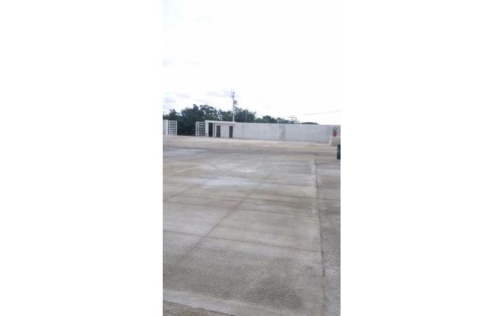 Foto de nave industrial en renta en  , central de bodegas, benito juárez, quintana roo, 1600624 No. 03