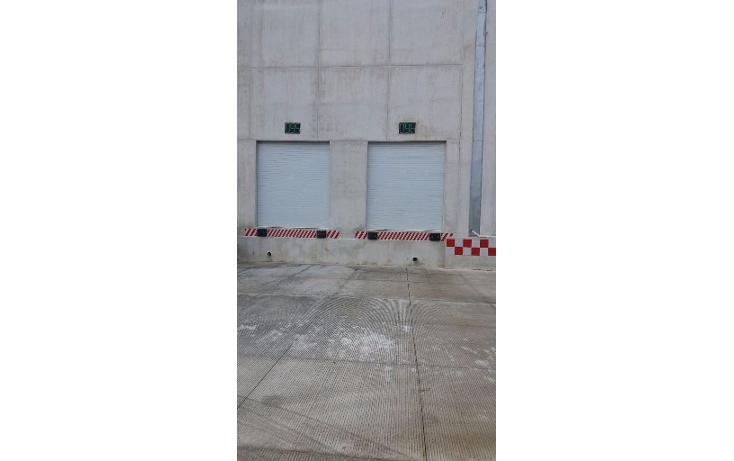 Foto de nave industrial en renta en  , central de bodegas, benito juárez, quintana roo, 1600624 No. 06