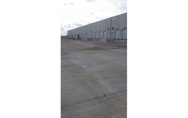 Foto de nave industrial en renta en  , central de bodegas, benito juárez, quintana roo, 1600624 No. 07