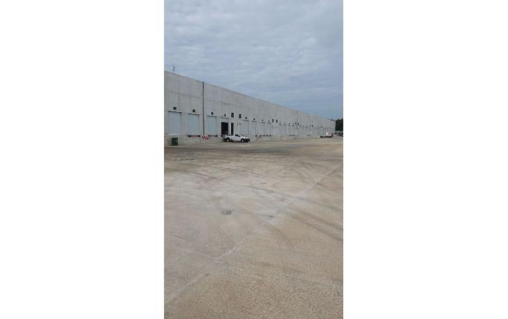 Foto de nave industrial en renta en  , central de bodegas, benito juárez, quintana roo, 1600624 No. 08