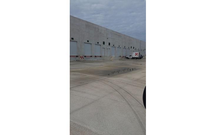 Foto de nave industrial en renta en  , central de bodegas, benito juárez, quintana roo, 1600624 No. 09