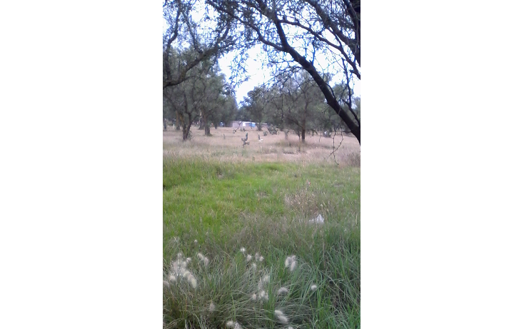 Foto de terreno habitacional en venta en  , central, nextlalpan, méxico, 1400075 No. 05