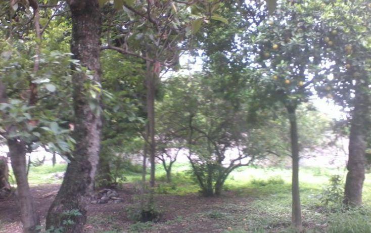 Foto de terreno habitacional en venta en centro 15, el caracol campo chiquito, yautepec, morelos, 1559158 no 04