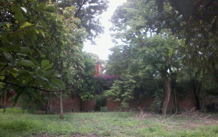 Foto de terreno habitacional en venta en centro 15, el caracol campo chiquito, yautepec, morelos, 1559158 no 06
