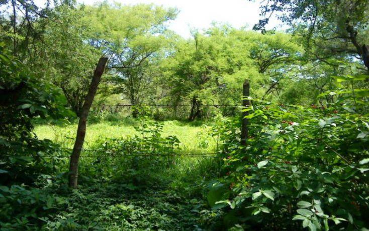 Foto de rancho en venta en centro 16, tehuixtla, jojutla, morelos, 1843426 no 09