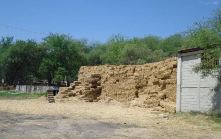 Foto de terreno habitacional en venta en centro 166, tehuixtla, jojutla, morelos, 1684232 no 04
