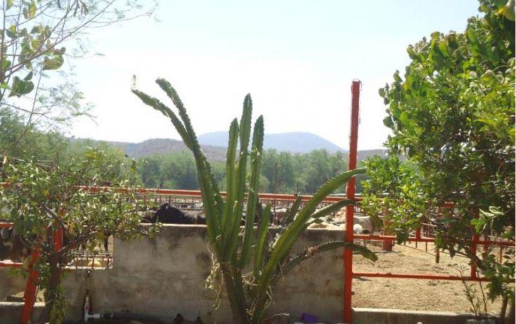 Foto de terreno habitacional en venta en centro 166, tehuixtla, jojutla, morelos, 1684232 no 05