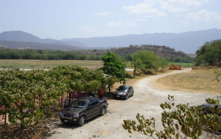 Foto de terreno habitacional en venta en centro 36, tehuixtla, jojutla, morelos, 1745591 no 10