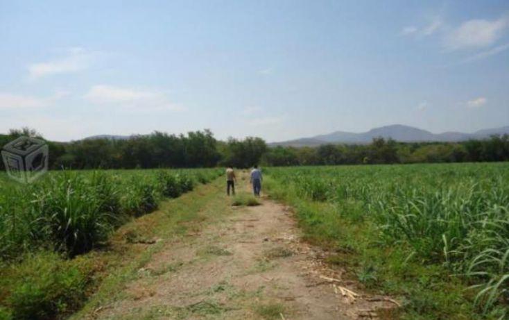 Foto de rancho en venta en centro 36, tehuixtla, jojutla, morelos, 1814888 no 02