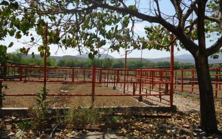 Foto de rancho en venta en centro 36, tehuixtla, jojutla, morelos, 1814888 no 03