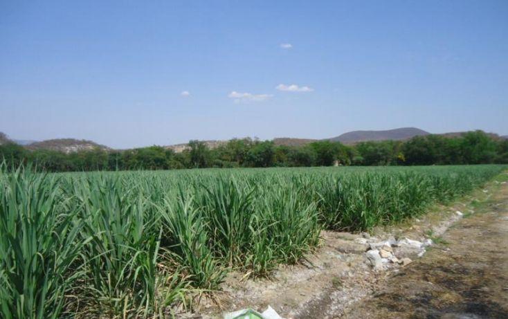 Foto de rancho en venta en centro 36, tehuixtla, jojutla, morelos, 1814888 no 04