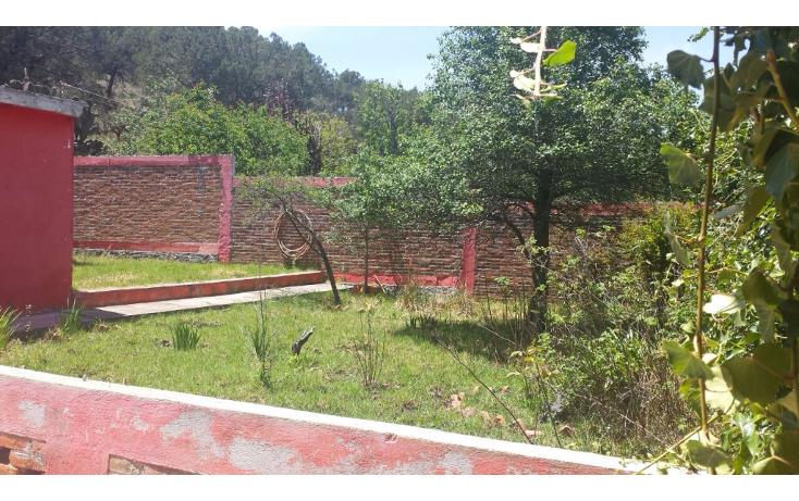 Foto de rancho en venta en  , centro, apan, hidalgo, 1093065 No. 06