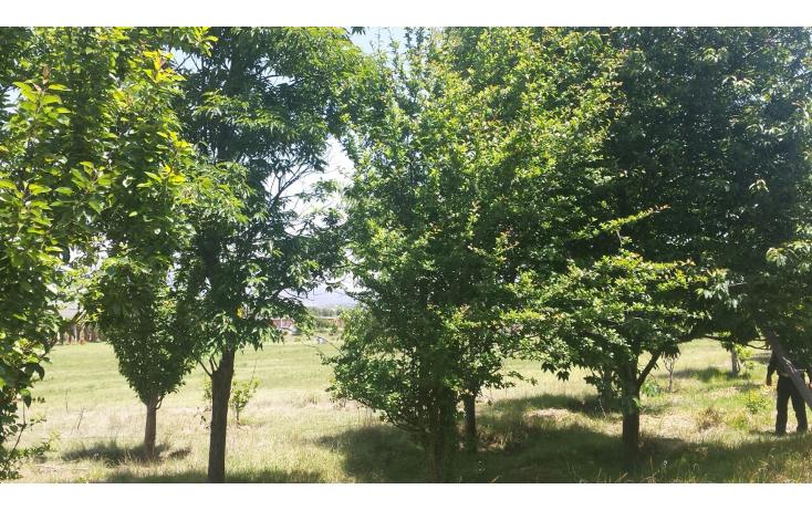 Foto de rancho en venta en  , centro, apan, hidalgo, 1093065 No. 14
