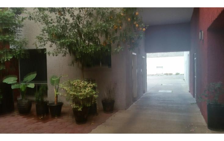 Foto de local en renta en  , centro, buenaventura, chihuahua, 1810652 No. 10
