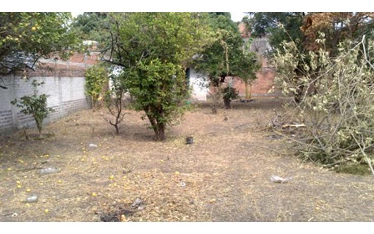 Foto de casa en venta en  , centro, cuautla, morelos, 1971578 No. 09