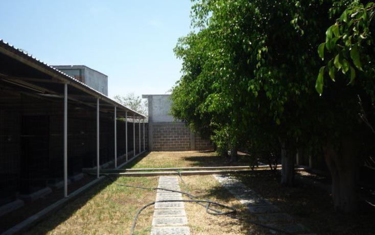 Foto de terreno habitacional en venta en  , centro, cuautla, morelos, 449037 No. 08