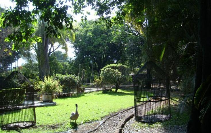 Foto de terreno habitacional en venta en  , centro, emiliano zapata, morelos, 1296077 No. 03