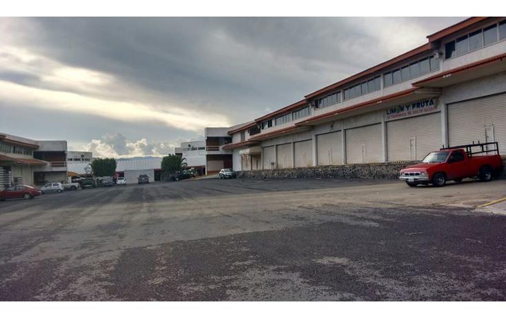 Foto de nave industrial en renta en  , centro, emiliano zapata, morelos, 1322947 No. 01