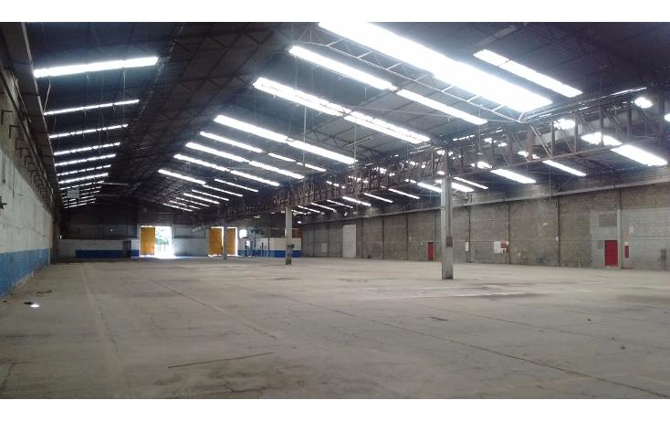 Foto de nave industrial en renta en  , centro industrial tlalnepantla, tlalnepantla de baz, méxico, 1204209 No. 05
