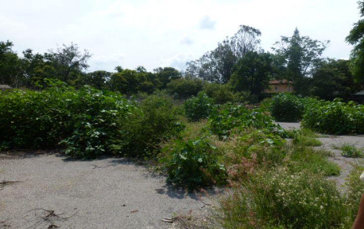 Foto de terreno habitacional en venta en, centro jiutepec, jiutepec, morelos, 1286181 no 01