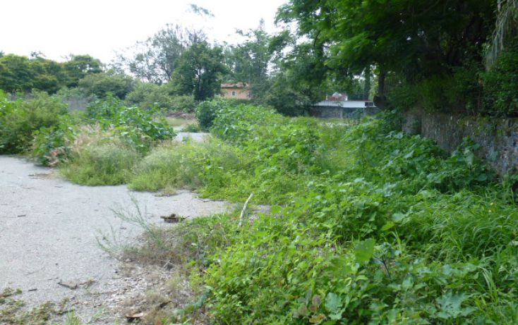 Foto de terreno habitacional en venta en, centro jiutepec, jiutepec, morelos, 1286181 no 04