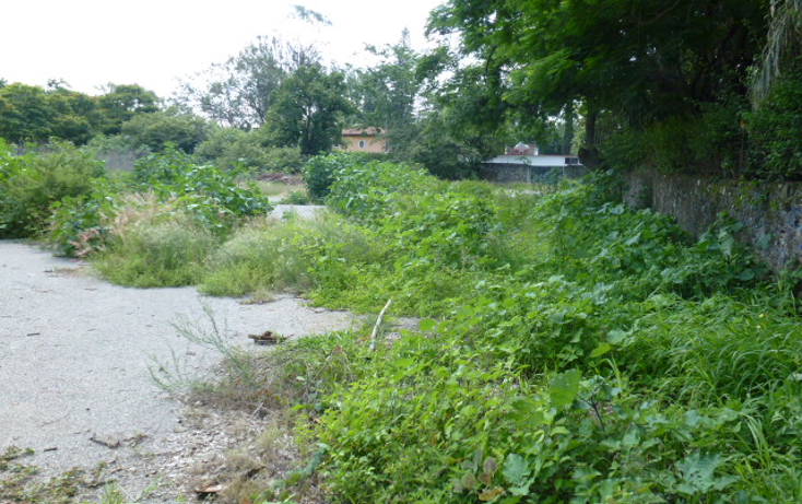 Foto de terreno habitacional en venta en  , centro jiutepec, jiutepec, morelos, 1286181 No. 04