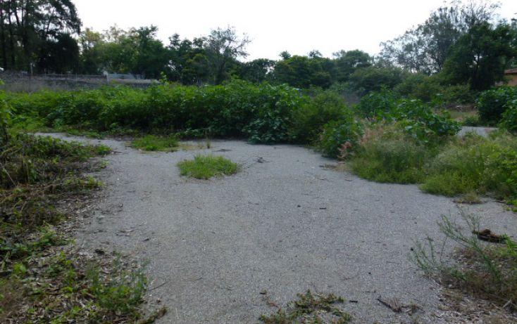 Foto de terreno habitacional en venta en, centro jiutepec, jiutepec, morelos, 1286181 no 05