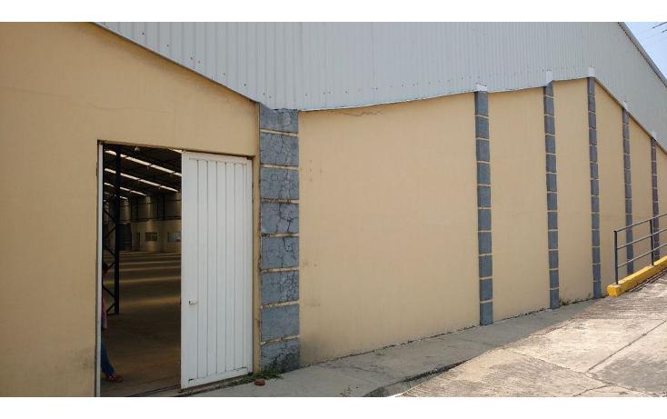 Foto de nave industrial en renta en  , centro jiutepec, jiutepec, morelos, 940199 No. 05