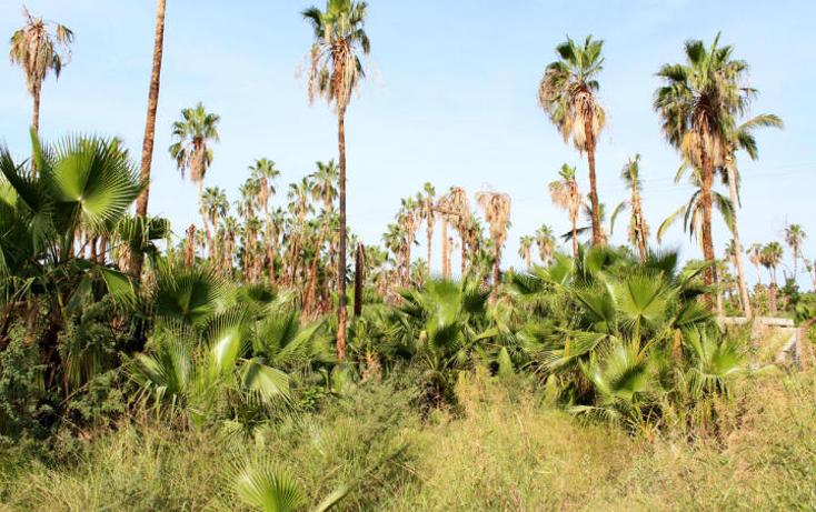 Foto de terreno habitacional en venta en  , centro, la paz, baja california sur, 1054735 No. 02