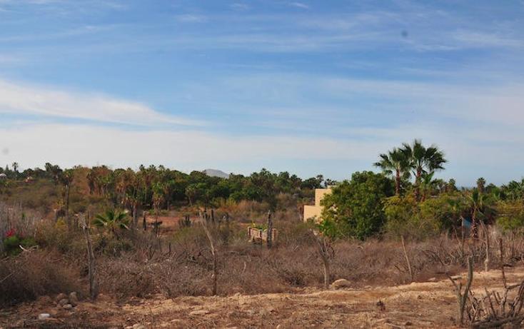 Foto de terreno habitacional en venta en  , centro, la paz, baja california sur, 1180669 No. 01