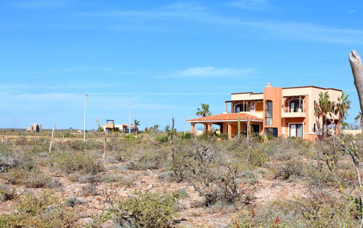 Foto de terreno habitacional en venta en  , centro, la paz, baja california sur, 1194577 No. 05