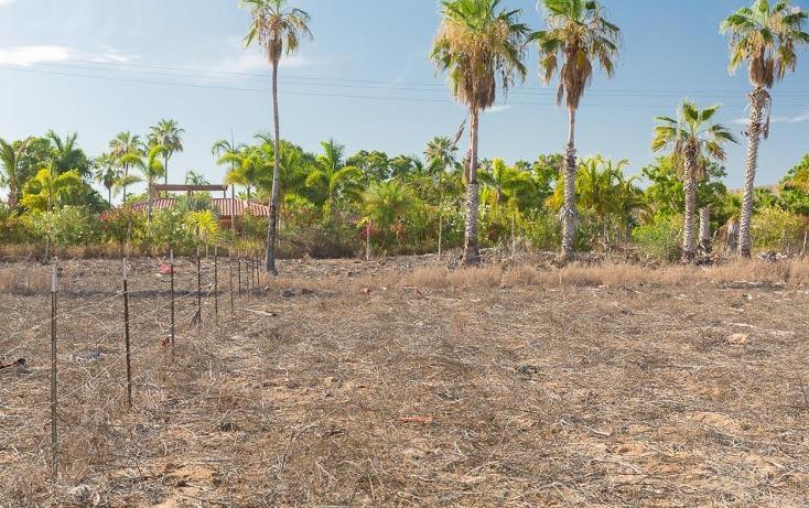 Foto de terreno habitacional en venta en  , centro, la paz, baja california sur, 1747126 No. 05