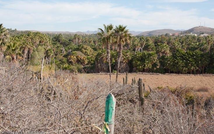 Foto de terreno habitacional en venta en  , centro, la paz, baja california sur, 2035846 No. 02